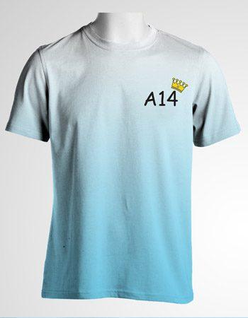 Áo thun lớp 12A14 – THPT Mạc Đĩnh Chi